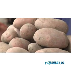 Картофель Овчи Таджикистан 1кг красная